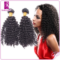 Best Quality 100% Afro Kinky Wave Wholesale Virgin Indian Remy Hair
