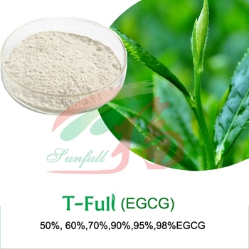 bulk Green tea Epigallocatechin Gallate EGCG 95% 98%