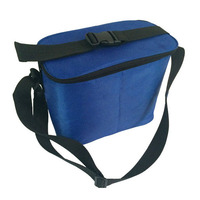 Wholesale promotional cheap 420 polyester durable school lunch cooler bags
