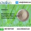 GMP ISO Factory Supply Chitosan Food