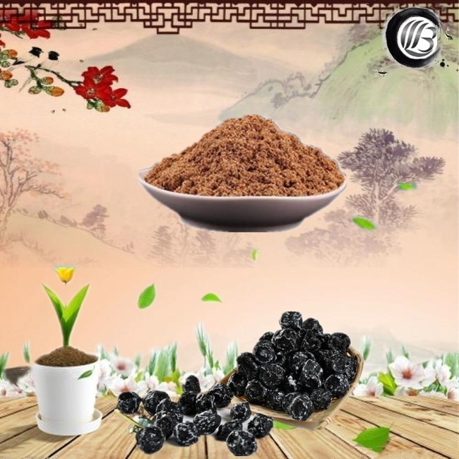 GMP high quality plum extract smoked plum extract dark plum extract