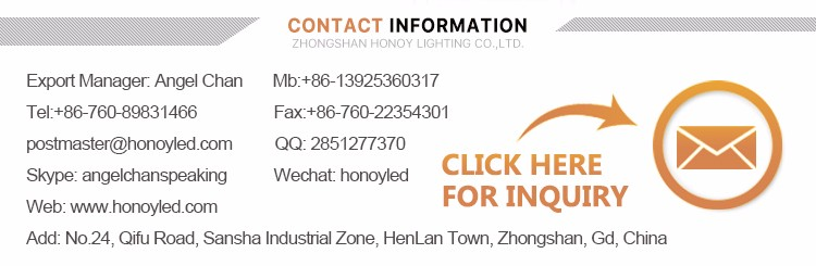 2017 Honoy Lighting Factory New Acrylic modern outdoor & indoor led wall light