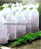 agriculture use and plastic pe tube film for packing tomato pe tube film for tomato