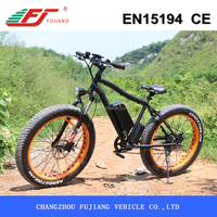 26 inch 500W new model electric bicycle for old people with EN15194