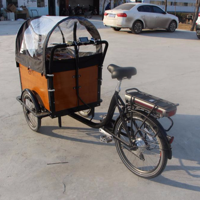 China front load cargo electric tricycle for family use