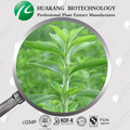 Customized Organic Stevia Extract in China