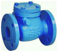 Alibaba API Swing Check Valve With