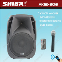 AK12-306 12 Inch speaker Class D outdoor concert sound system professional
