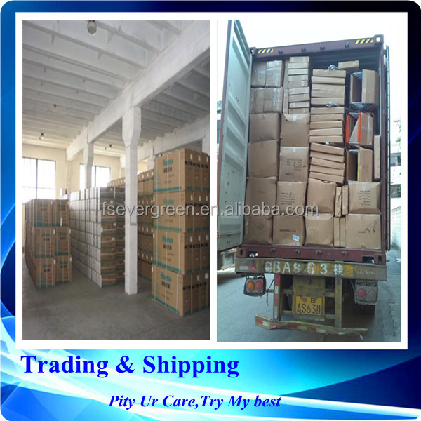 guangzhou shipping rate to Vladivostok fish port freight forwarder agent