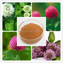 red clover extract for antibiotic/red clover flower extract/red clover extract biochanin a