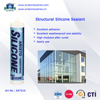 Neutral Cure Structural Liquid Waterproof Silicone Sealant for Structural Bonding 300ml