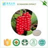diabetes cures herbs natural schizandra extract Korean Omicha extract 5%
