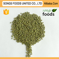 Wholesale Dry Beans Green Mung Beans