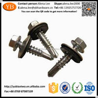 Steel Slotted Head Self Tapping Screw With Zinc White ISO/TS16949 Passed