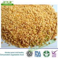 26-40mesh Dehydrated china fried garlic granules from Tianjin or Qingdao port