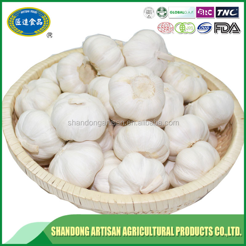 China made cheap price fresh style natural garlics best selling products