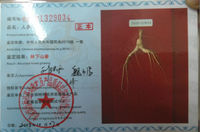 Chinese top quality of ginseng root and deer velvet antler