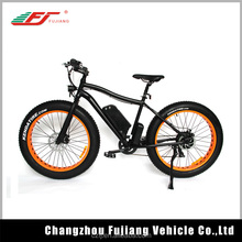 48v 750w BAFANG motor fat tire electric bicycle e bike ebike