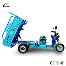 2018 Hot China New Cheap Gasoline 250CC Engine Cargo Tricycle For Sale Malaysia Philippines
