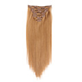 Clip In Hair Extension 100%Human Hair Factory Price
