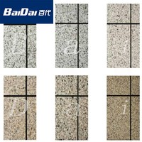 China Baidai spray rough texture paint