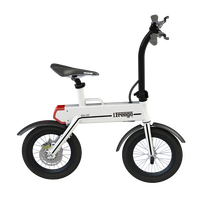 CE Approved Electric Bycycle Light Weight Electric Bicycle Made In China