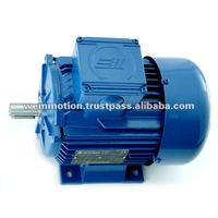 Single Phase Asynchronous Marelli Motor