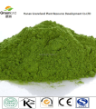 Manufacturer Supply Barley Grass Extract Powder