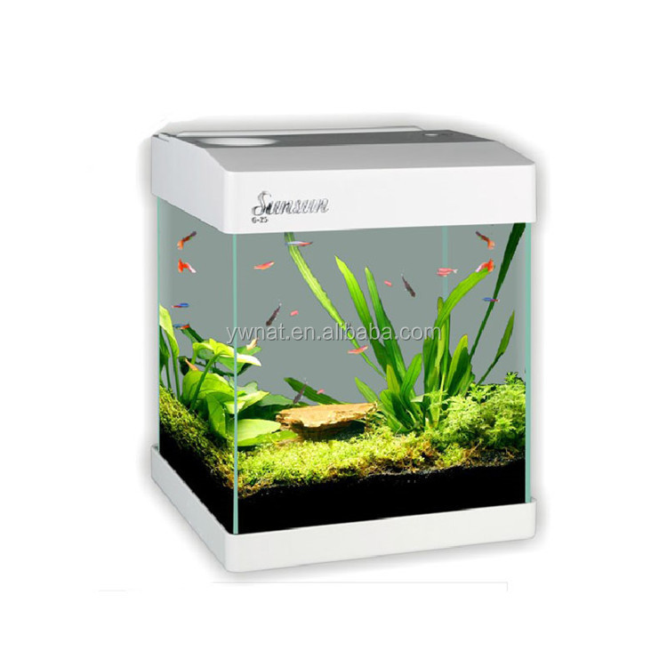 Aquarium With Lamp and Filter Fish Tank