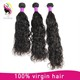 100% human Brazilian virgin hair 8-30inch wholesale distributors Brazilian water wave