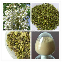Sophora Japonica Extract 100% Natural Rutin NF11 95% CAS 153-18-4