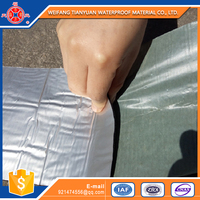 Effective Import Building Material Waterproofing From