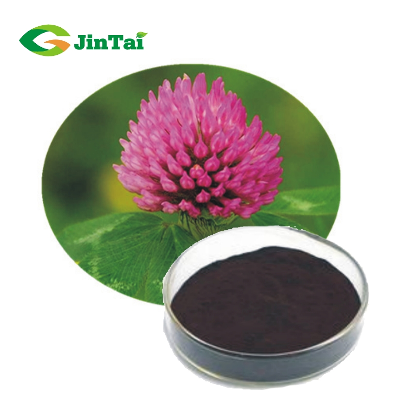 Top quality 2.5% 8% 20% 40% Red Clover Extract