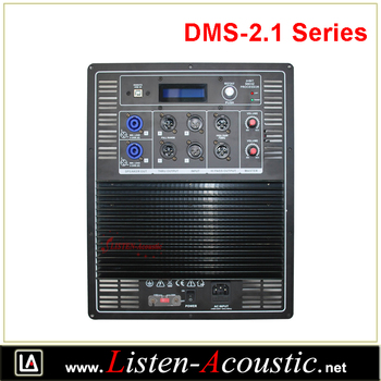 DMS 2.1 Digital Mono-Amplifier with Passive Crossover