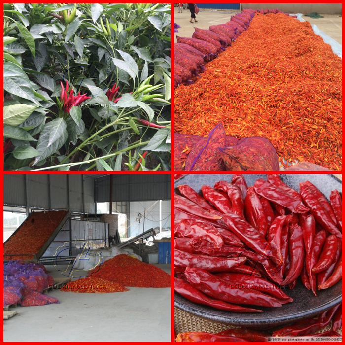 High drying efficiency and short drying cycle mass production chilli pepper dehydrator