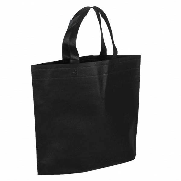 Reusable Fancy Shopping Bag/European Non Woven Bags/Non Woven Bags