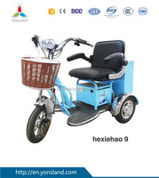 3 Wheel Electrical Bicycle with Double Seats