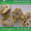 Factory supply Artichoke leaf extract/Cynarin 5%/Chlorogenic acid 5%/Diabete prevention plant extract