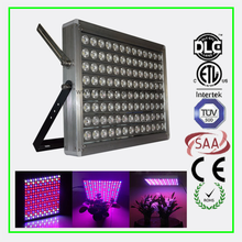 660nm Blue 460nm customized reita led full spectrum plant grow light bulb 240W led grow light