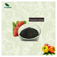 Best Potassium Humate factory with high content of humic acid