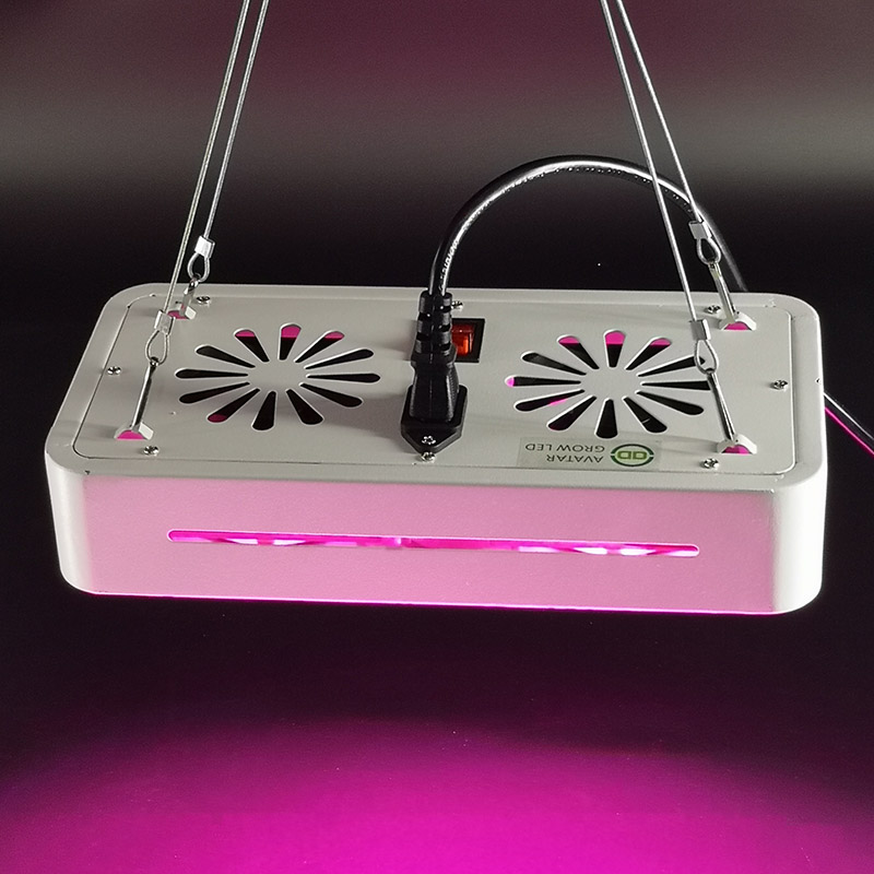 2019 Shenzhen Factory EXW 100W pink&sunlight color cob led grow light full spectrum for medical plants