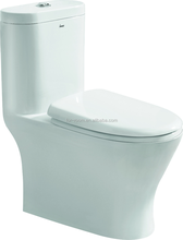 Geberit fittings, one-piece toilet