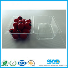 food grade disposable fruits blister plastic packaging container