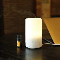 Ultrasonic aroma diffuser factory / Aroma diffuser fragrance oil / Aroma diffuser for home