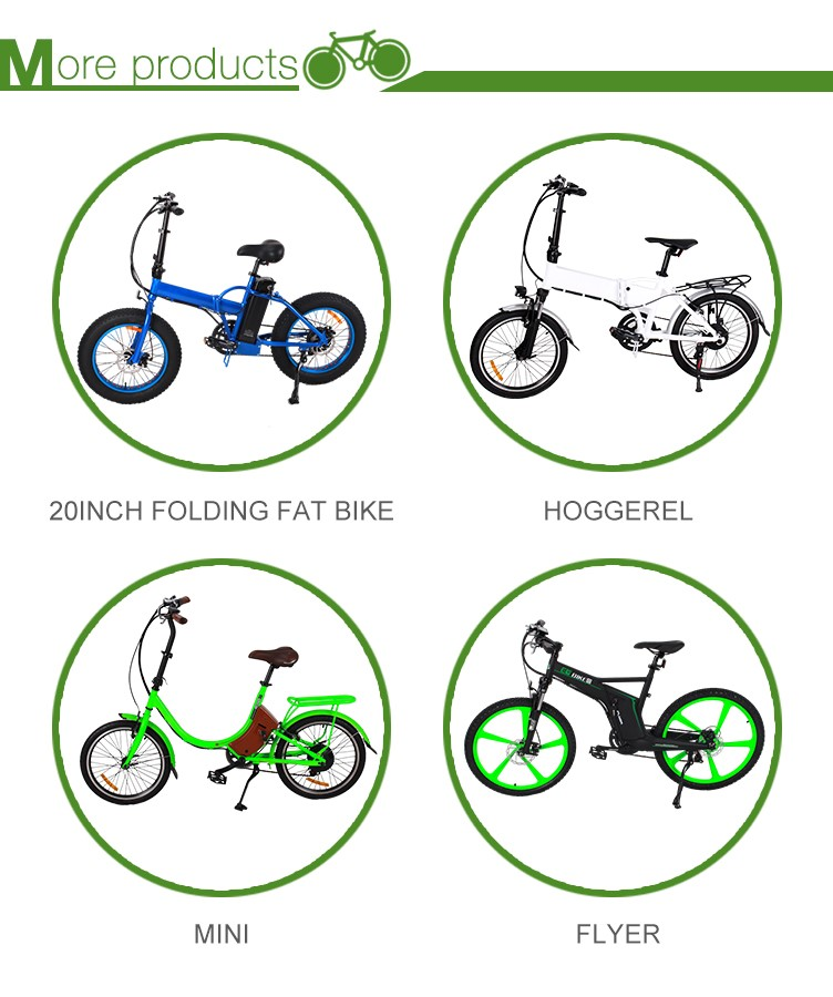 seagull 26inch fat tire electric bike ebike bicycle
