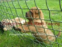 dog fence netting