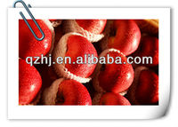 fresh red Fuji Apple, sweet, tasty, chinese apples