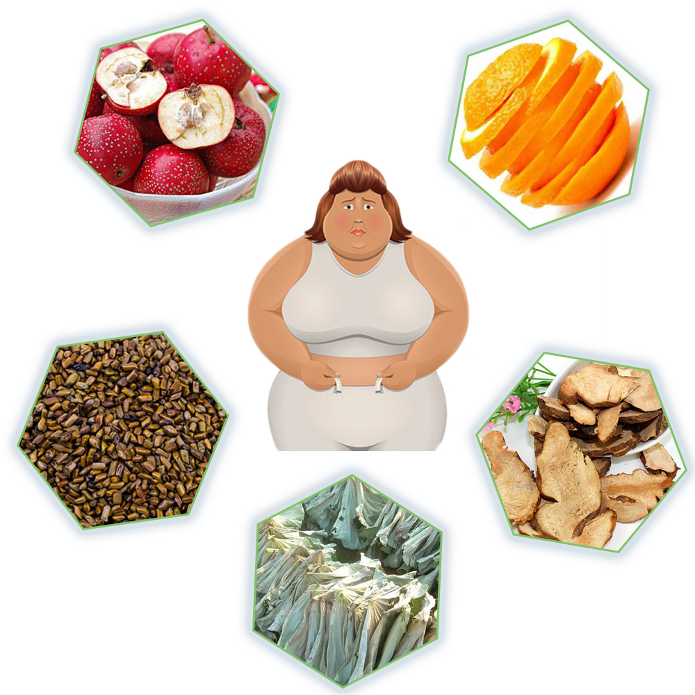 reduce fat tea remove obesity natural herbal tea