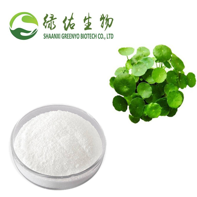 Super quality Herba Centellae extract/Asiaticoside/16830-15-2/ in stock