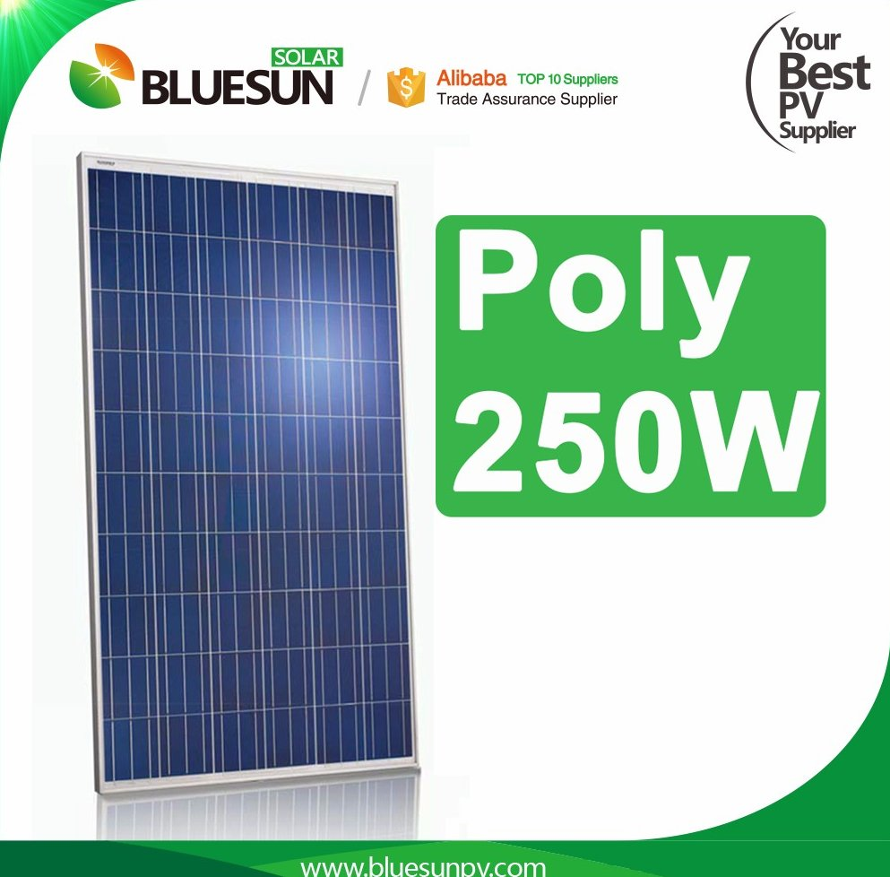 Bluesun Best price poly solar panels 250w 260w 270w 280w for on grid solar system
